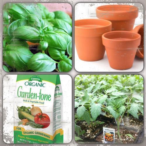 Garden Centers Nurseries In Bucks County Pa
